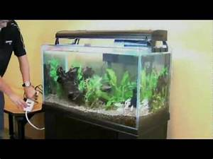 Cleaning Fish How To Clean Your Aquarium With The Aqueon Siphon Vacuum