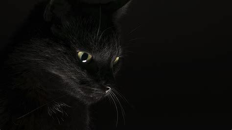 Schöner Hintergrund Schwarz Weiß by Die 79 Besten Schwarz Hintergrundbilder