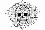 Coloring Sugar Skulls Flowers Drawing Colouring Colorear Calaveras Template Sketch Imagenes sketch template