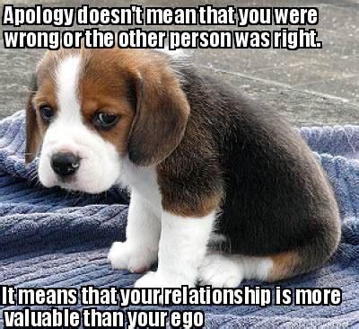 Apology Meme - apologizing memes image memes at relatably com