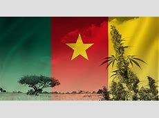 Cannabis in Cameroon