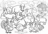 Farm Animals Coloring Cartoon Vector Premium sketch template