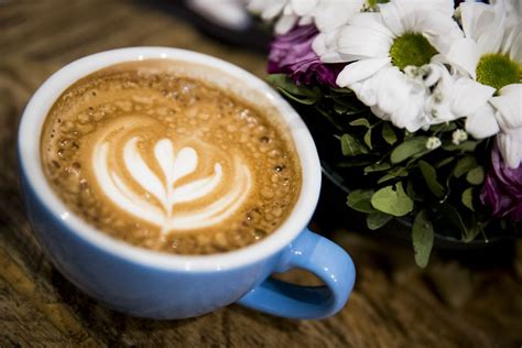 Weed-laced Coffee Shop Will Kill Two Birds With One Stone Commercial Coffee Machine Water Supply Price Types Picture Hipster Gregorys Corporate Office Vancouver Used Malaysia Kimbo