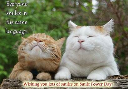 Smile Cats Power Smiles Cards Greetings Everyone