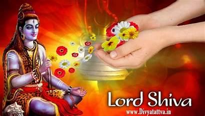 Shiva Lord Background 3d Hindu Mantra God