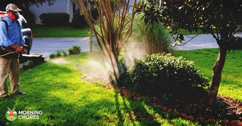 Backyard Mosquito Reviews by 5 Best Mosquito Fogger Reviews To Completely Kill Those