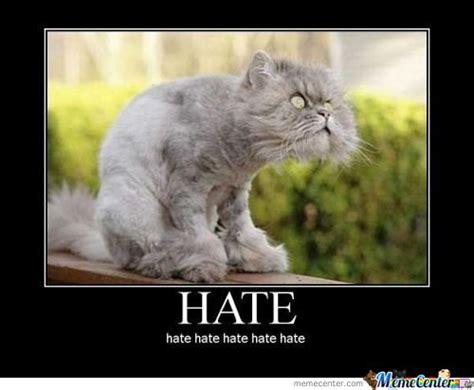 Hate Meme - hateful memes image memes at relatably com