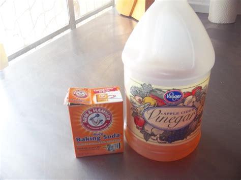 Drain Cleaner For Kitchen Sink by Kitchen Sink Drain Cleaner Recipe By Myra