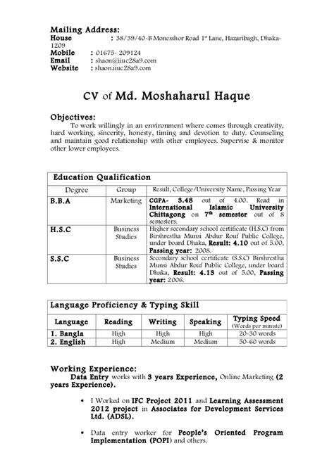 employment curriculum vitae sle cv for it or any of computer