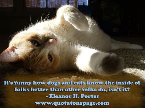 Quote Details Eleanor H Porter Its Funny How Dogs