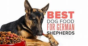 what is the best dog food for a german shepherd sheppedcom With german shepherd dog food