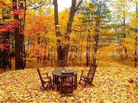 fond de bureau tlcharger fond d 39 ecran automne arbres chaises de bureau
