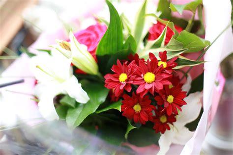 Foto Blumenstrauß Kostenlos by Blumenstrau 223 Bilder 187 Bilddatenbank 187 Stockfotos