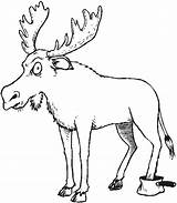 Forest Coloring Animals Pages Moose Kelp Drawing Animal Getdrawings Mouse Getcoloringpages Cartoon Coloringpages101 sketch template