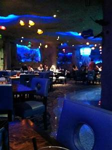 Is that a shark? Picture of Aquarium Restaurant