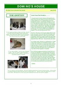 Free Newsletter Templates Microsoft Word 2010