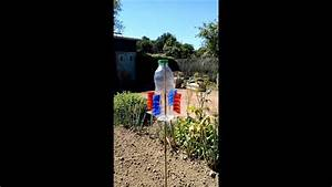 Faire Fuir Les Pigeons : ma bouteille pour chasser les oiseaux au potager youtube ~ Melissatoandfro.com Idées de Décoration