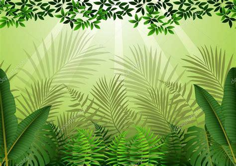 foto de Transparente com fundo de Floresta Tropical Vetor de