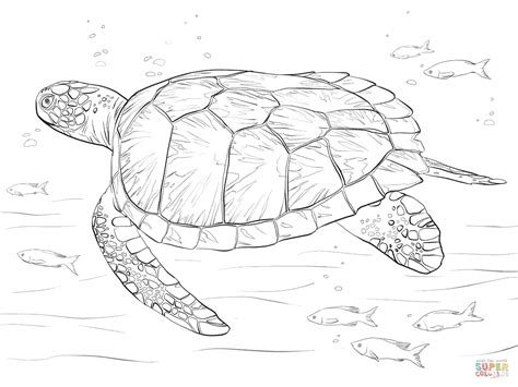 leatherback sea turtle coloring page  getcoloringscom  printable colorings pages