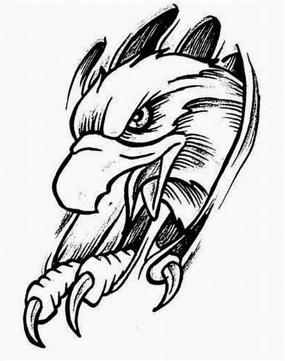 Eagle Tattoo Stencils Stencil Tattoos Feather Drawing