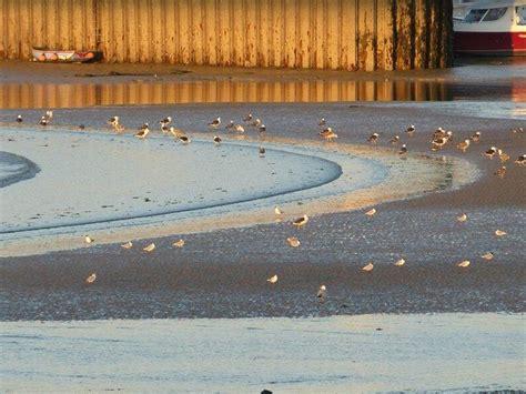 h 244 tel 224 port en bessin ibis bayeux port en bessin