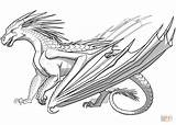 Coloring Wings Dragon Fire Icewing Printable Drawing sketch template