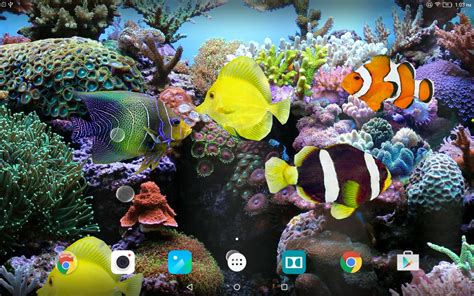 3d Wallpaper Live by Coral Fish 3d Live Wallpaper Apk Free