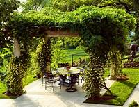 magnificent covered patio design ideas Magnificent Wisteria Furniture look Other Metro ...