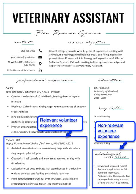 Volunteer Experience On Resume by How To Put Volunteer Work On Your Resume Resume Genius