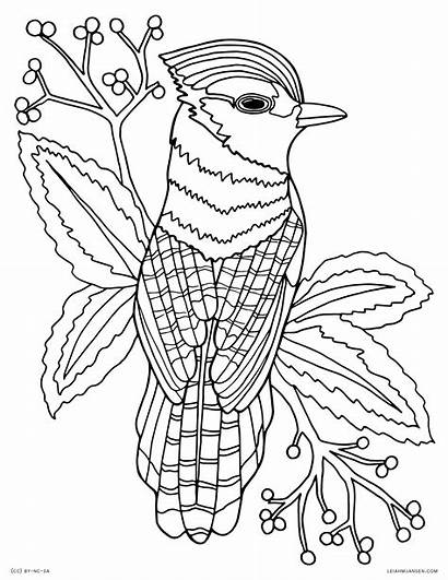 Coloring Pages Adults Animal Detailed Printable
