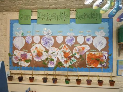 Our Vegetable Garden Display, Classroom Display, Plants