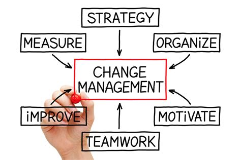 change management consulting