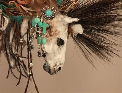 Native American Horse Screensavers Wallpapersafari Jerrys