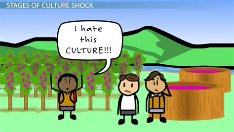 culture shock definition stages examples video