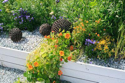 Blumenbeet Gestalten Mit Kies by Blumenbeet Mit Kies Anlegen Pflanzen Pflegen