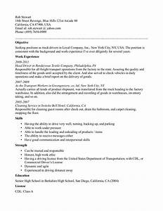 cdl truck driver resume template resume template With resume samples for truck drivers with an objective