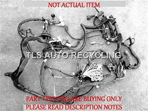 2007 Audi Q7 Audi Body Wire Harness  Main