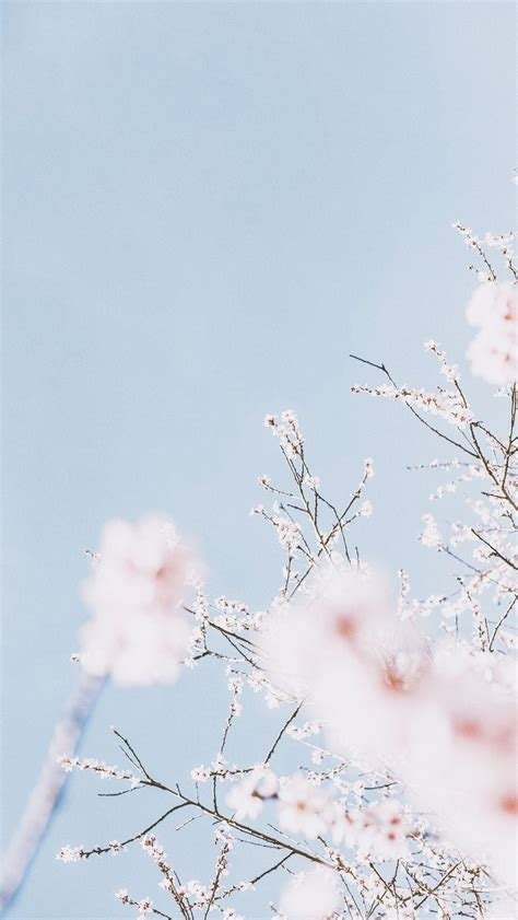 pastel blue aesthetic iphone wallpapers