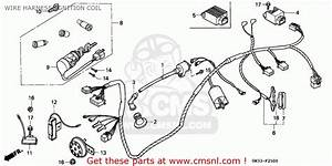 Honda Nh90 Lead 1994 Spain Wire Harness  Ignition Coil