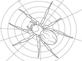 lace webbed spider coloring page  printable coloring