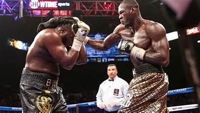 Wilder Heavyweight Champion