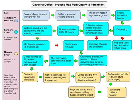The differences among coffee brewing methods. The Catracha Quality Project Process Map | Royal Coffee