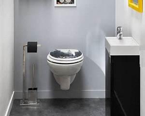 Deco Wc Gris : couleur peinture et rangement pour wc et toilette ~ Melissatoandfro.com Idées de Décoration