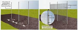 Fabriquer Un Treillage En Fil De Fer : fabriquer des rames pour haricots potager ~ Voncanada.com Idées de Décoration