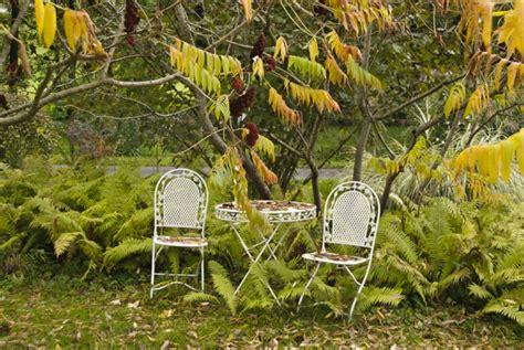 Wie Gestalte Ich Meinen Garten Im Herbst  30 Schöne