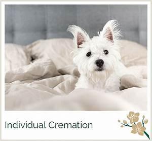 greenacres pet crematorium With sound proof dog bed