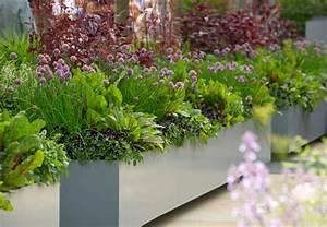 krauter in topfen und kubeln richtig einpflanzen und pflegen With garten planen mit kräuter auf balkon anpflanzen
