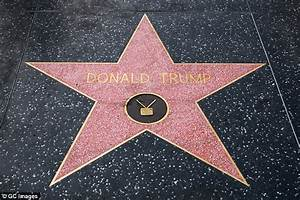 Protesters fight near Trump's star on Hollywood Walk of ...