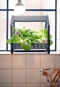 cuisine kit ikea hydroponic gardens go mainstream at ikea homestead guru