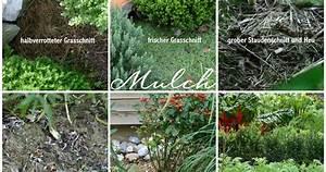 Immer Blühender Garten : ein schweizer garten was ich immer wieder gefragt werde ~ Markanthonyermac.com Haus und Dekorationen